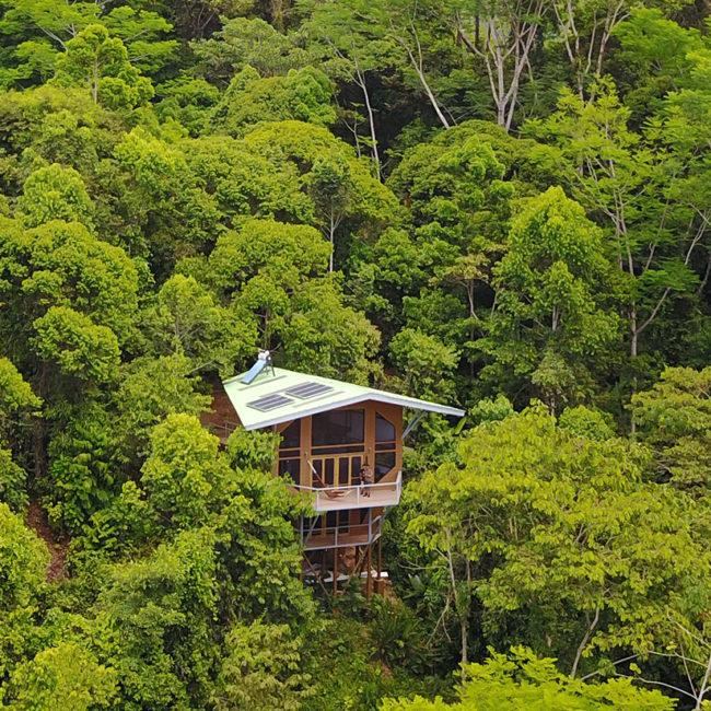 Finca Bellavista Puntarenas Province
