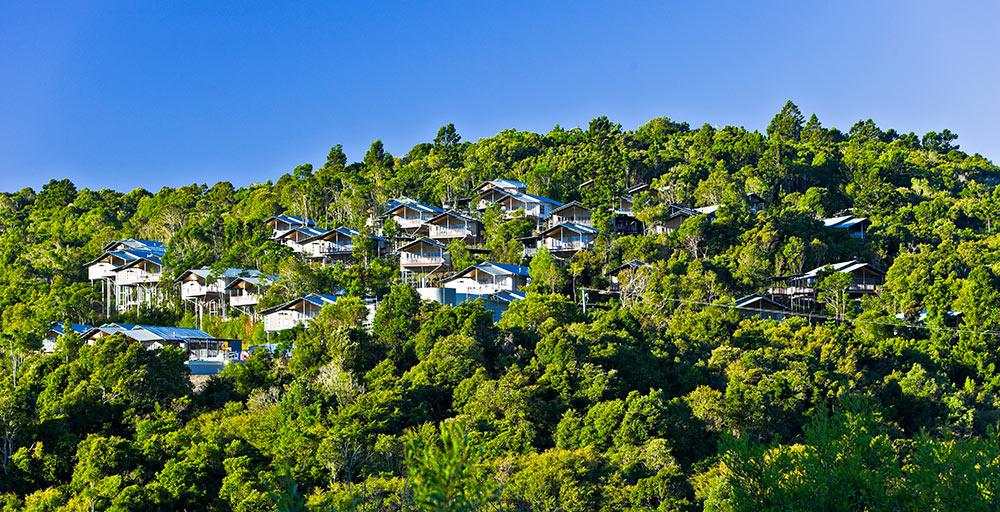 O'Reilly's Rainforest Retreat Queensland