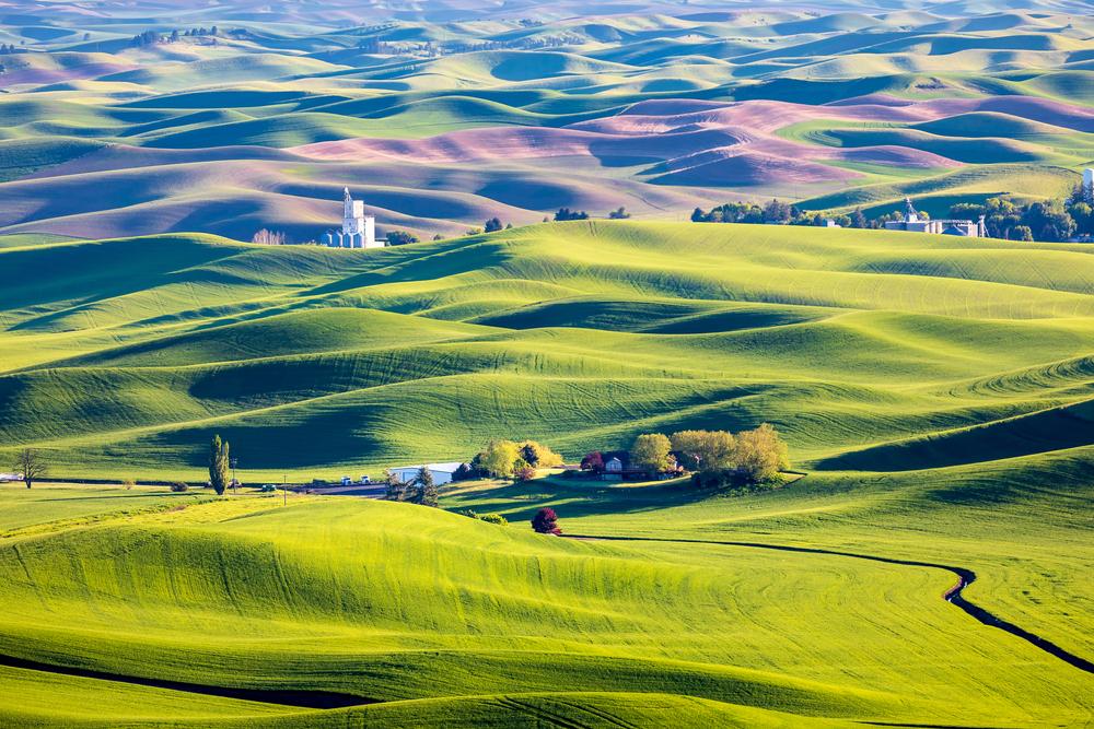 The Palouse, Washington, Idaho, and Oregon