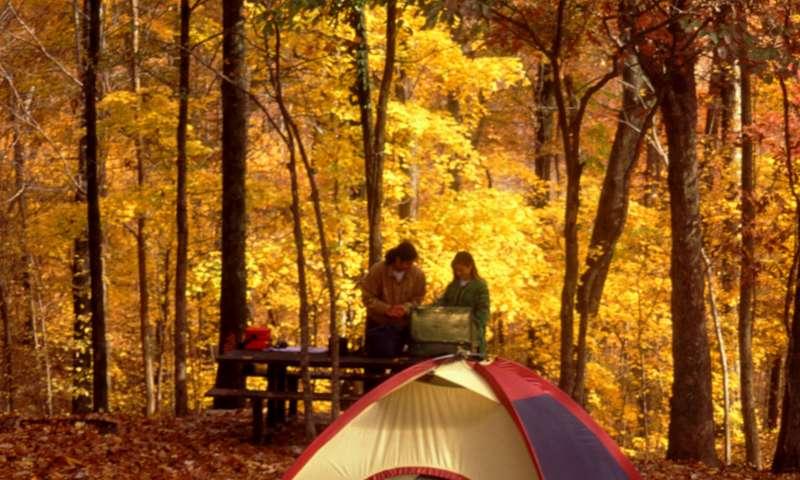 Village Creek State Park